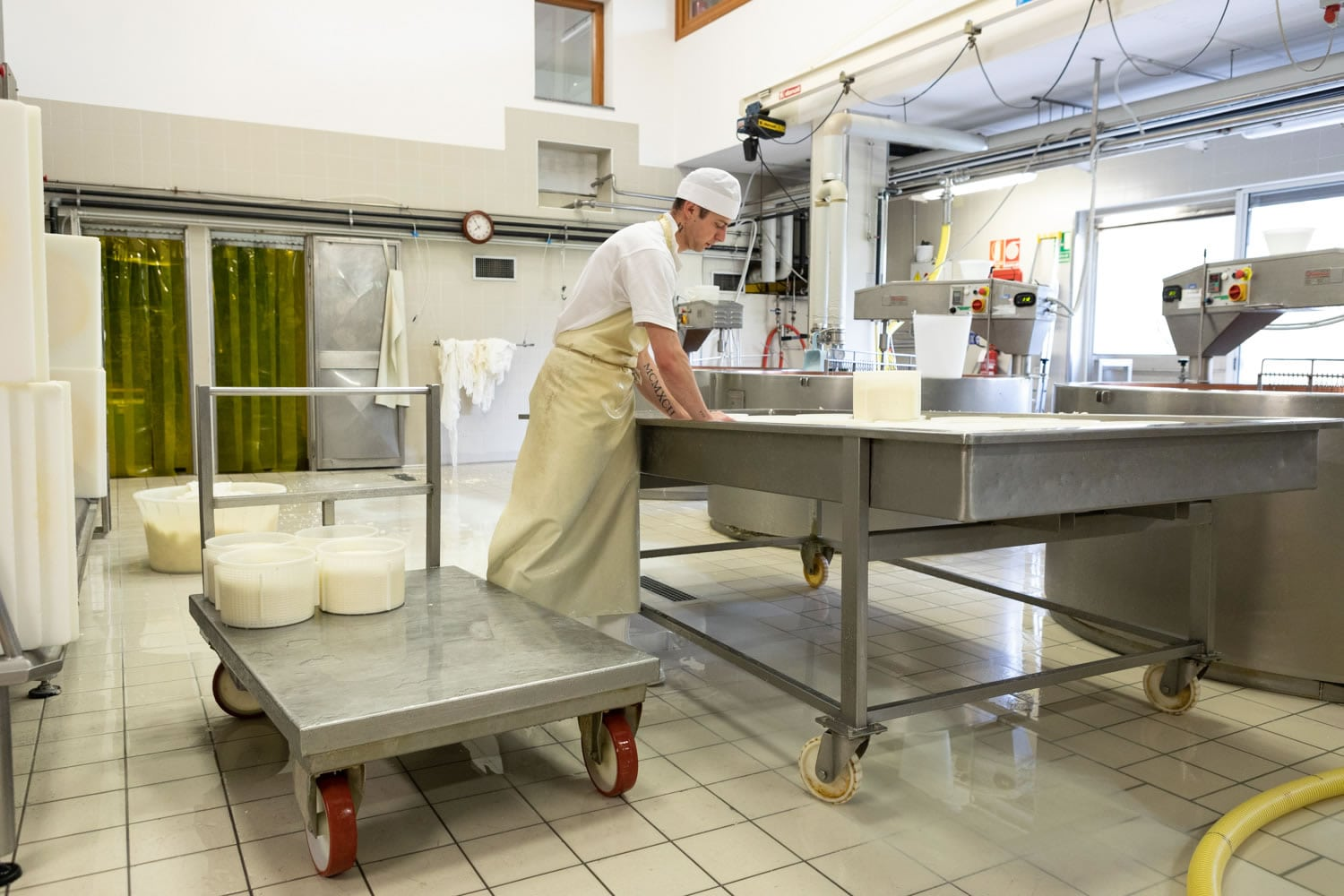 Cheese making and ripening