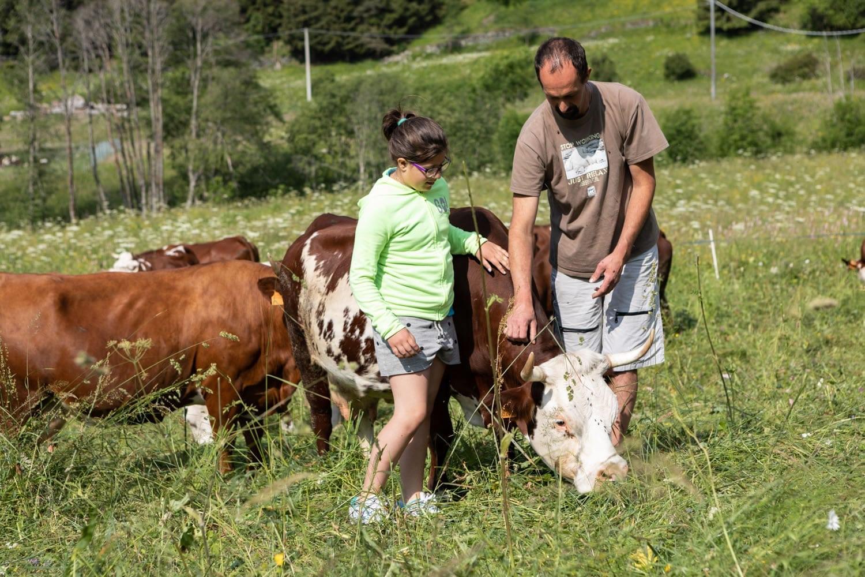 Les pâturages et l'élevage